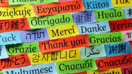 Rely on Professional German Translation to Handle Your Accounts